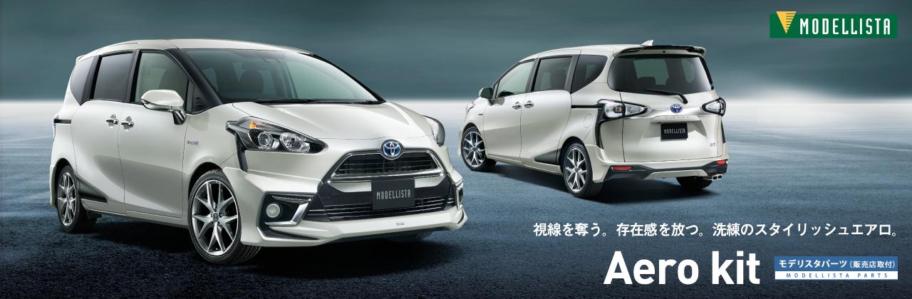 Modellista Trust Amp Reliable Japan Car Exporter